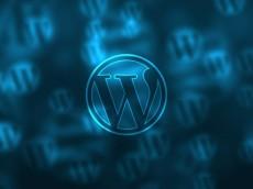 WordPress 创建自定义 URL 页面模板